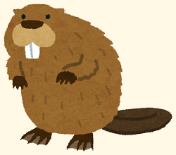 /wp-content/uploads/animal_beaver1-1.png
